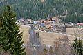 Reichenau Vorwald Gurktal 18032011 333.jpg