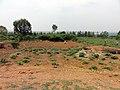 Reuse of the digested sludge in the school's garden (6008547944).jpg