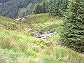 Rhuddnant gorge - geograph.org.uk - 519679.jpg