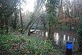 River Len - geograph.org.uk - 1610554.jpg