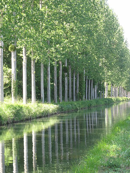Canal de l'Ourcq in Varinfroy