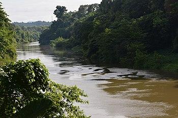 River scenary.jpg
