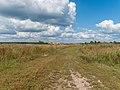 Road - panoramio (160).jpg
