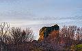 Rock (5285320205) (2).jpg