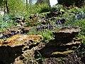 Rock garden, Castle Archdale - geograph.org.uk - 789456.jpg