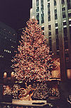 Rockefeller Center Tree.jpg