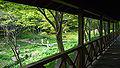 Rokko alpine botanical garden11s2816.jpg
