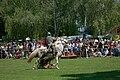 Roman cavalry reenactment Carnuntum 2008 14.jpg