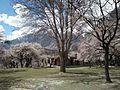 Royal Garden, Altit Fort, Hunza.jpg