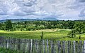 Rustic fence by a meadow (Unsplash).jpg