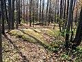 SPHSP bedrock outcrop 01.jpg