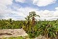 Samaná Province, Dominican Republic - panoramio (166).jpg