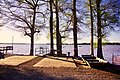 Samburg-Reelfoot-Lake-tn1.jpg