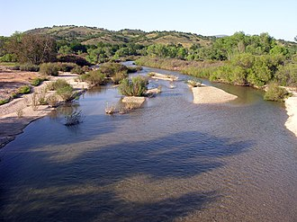 San Antonio River (California) - An image of the San Antonio River, upstream of Lake San Antonio