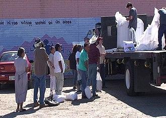 Jojoba - Wild jojoba seed market on the San Carlos Apache Indian Reservation in Arizona