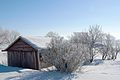 Saskatchewan winter (3285543549).jpg