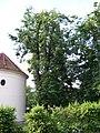 Satalice, Za kapličkou, kaple a lípy (02).jpg