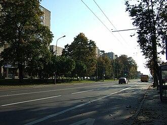 Vilkpėdė - Image: Savanoriu prospektas 2010