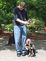 Seattle Center puppeteer.jpg