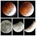 Secuencia del Eclipse lunar (8 de octubre).jpg