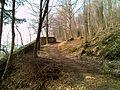 Sentiero Natura - panoramio - ErikIce (1).jpg
