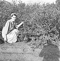 Shantz Garden In Guernsey, Saskatchewan (6815831774).jpg