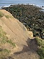 Sharpness Point Erosion - geograph.org.uk - 325617.jpg