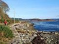 Shoreline of West Loch Tarbert - geograph.org.uk - 1599383.jpg