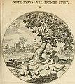 Silenus Alcibiadis, sive, Proteus - vitae humanae ideam, emblemate trifariàm variato, oculis subijciens (1618) (14745808124).jpg