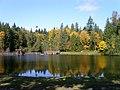 Silver Lake, Whatcom County, Washington (2008-10-18), 12.jpg