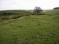 Site of Settlements at Middleton Old Town - geograph.org.uk - 384709.jpg