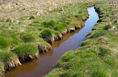 Small stream at Gullmarsvik 1.jpg