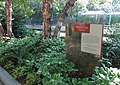 Smithsonian Gardens in July (19465486404).jpg