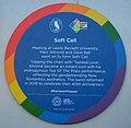 Soft Cell Rainbow Plaque.jpg