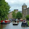 Sorrel in the Leeds and Liverpool Canal, Skipton (8952758464).jpg