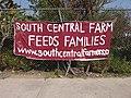 South Central Farm 31.jpg