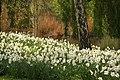 Spring in London (7116613763).jpg
