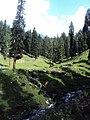 Srinagar - Pahalgam views 74.JPG