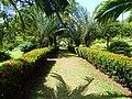 St. Vincent, Karibik - Botanical Garden of Kingstown - panoramio.jpg