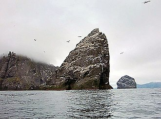 Great auk - Stac an Armin, St. Kilda, Scotland, one locality where the great auk used to breed