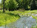 Stadtpark Wurzbach 2.jpeg