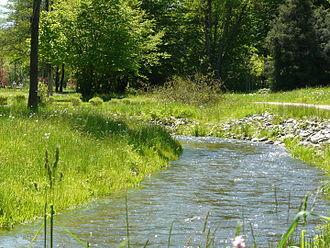 Sormitz - Sormitz in the town park of Wurzbach
