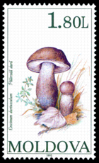 Stamp of Moldova 332 - 2.png
