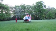 File:Start & take-off of an Airbus Helicopters H135.webm