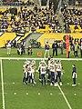 Steelers vs Rams 16.jpg