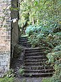 Steps at edge of Panorama Woods, Ilkley - geograph.org.uk - 60778.jpg