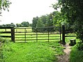 Stile into cattle pasture - geograph.org.uk - 1420012.jpg