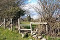 Stile on footpath north of Coed Cwintin - geograph.org.uk - 755441.jpg