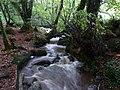Stream in Bosahan Woods - geograph.org.uk - 1611361.jpg