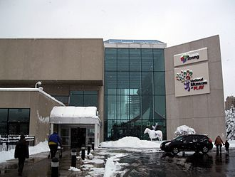 Strong National Museum of Play - The museum entrance in 2013